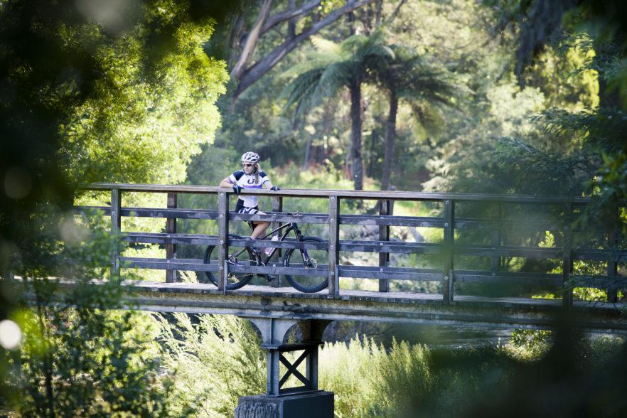 bramich-bridge0897