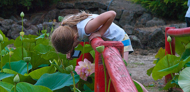 Lotus Farm - Warburton