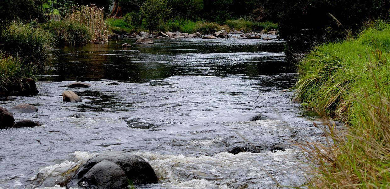Yarra River Warburton Victoria