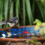 Sacred Garden Moment - Nain Philp